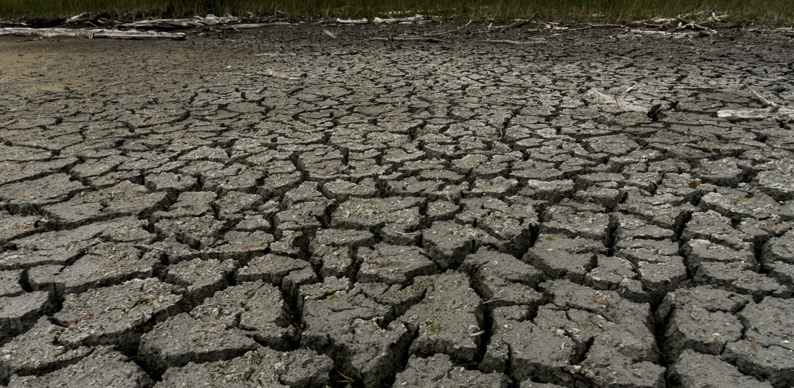 UTTØRKET: Flere steder i Norge har svært lavt grunnvannsnivå på grunn av tørken. Bildet er fra Mysutjern sør for Kongsberg. Foto: Lars Eivind Bones / Dagbladet