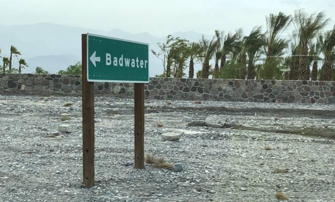 OASE: 50 grader og ørken til tross, det finnes liv i Death Valley .