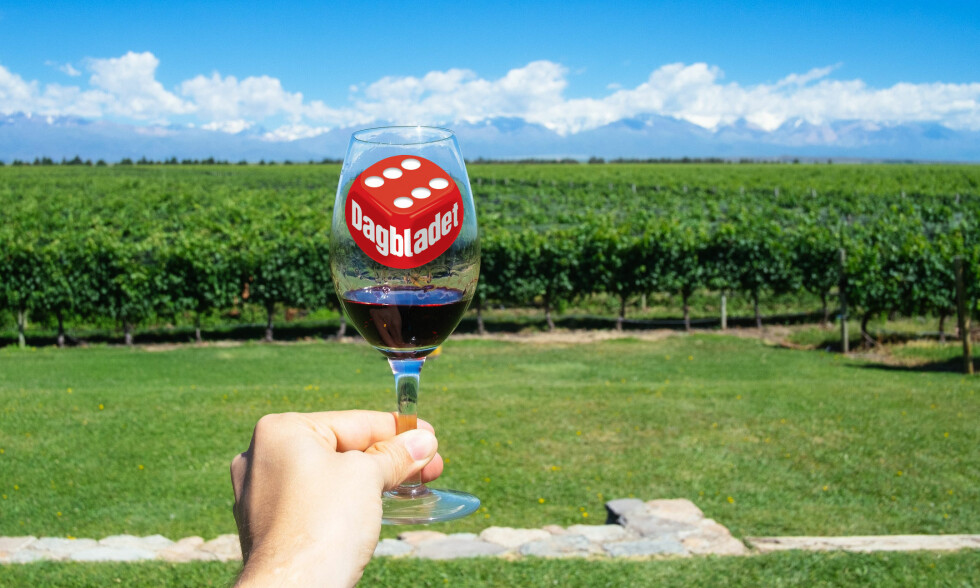 KJØLIG KLIMA: Forholdene ved foten av Andesfjellene, i Mendoza, gir kjøligere temperaturer og viner med mer nyanserte aromaer og bedre syrestruktur.<br> Foto: Shutterstock / NTB Scanpix
