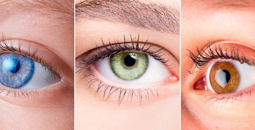 BLÅ, GRØNN ELLER BRUN: Det er ikke så enkelt som mange tror. Er begge dine foreldre blåøyde, kan du likevel få grønne eller brune øyne. Foto: NTB Scanpix / Shutterstock