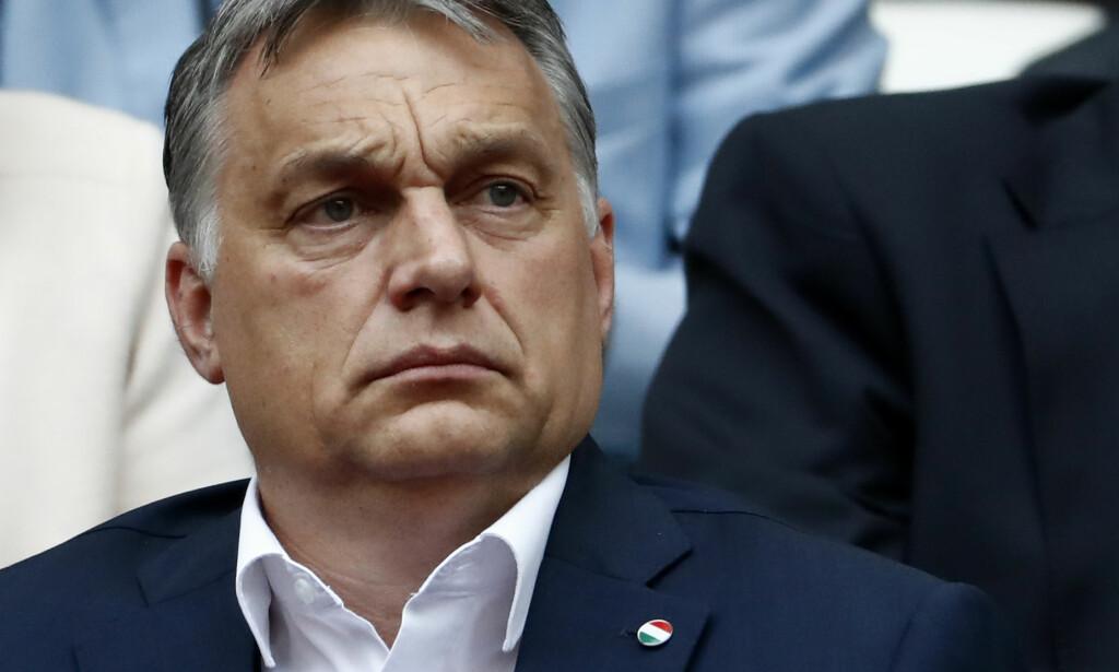 VIL LEGGE NED: Den ungarske presidenten, Victor Orban, vil kutte støtten til kjønnsstudier ved landets universiteter. Foto: Odd Andersen / AFP Photo/ NTB scanpix