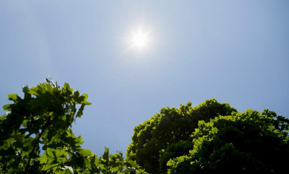 KNALLVÆR: Meteorologisk institutt melder knallvær onsdag. Helgen ser også ut til å bli bra. Foto: Vegard Wivestad Grøtt / NTB scanpix