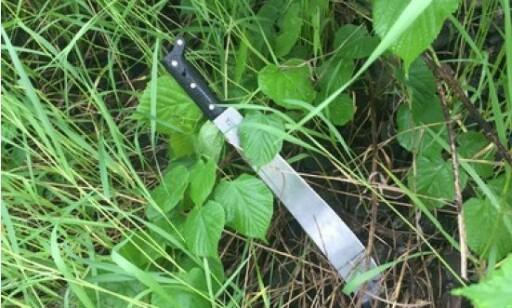 VÅPENET: Politiet mener det er dette våpene som ble brukt under angrepet på en 23-åring. Foto: Politiet.
