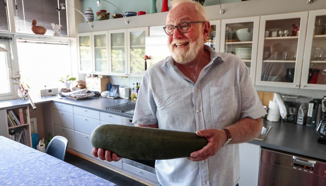 NYTTE: Flere av plantene hos Kjell og Christian er nytteplanter. I løpet av sommeren har de hentet inn tre store squash. FOTO: Lise Åserud / NTB scanpix