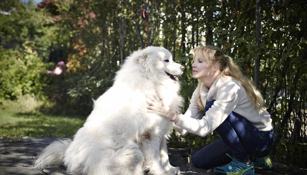 FORDOMSFRI: Grethe Bøe har bevisst omringet seg med dyr, og har både samojeden Shantos og tre katter. - Dyr dømmer deg ikke. FOTO: Geir Dokken