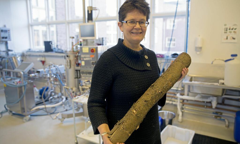 TØMMER TIL MAGEN: Professor Margareth Øverland i Foods of Norway vekker oppsikt med tømmer som blir til dyrefor. Foto: NMBU