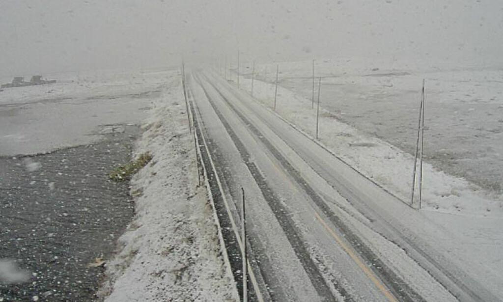 SNØ: Snø og vanskelige kjøreforhold på riksvei 7 ved Skulevika på Hardangervidda onsdag. Foto: Statens vegvesen / NTB scanpix