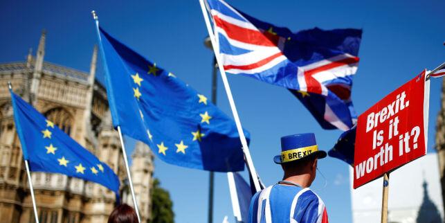 image: Du bør elske EU og forbedre hennes mangler