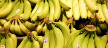 Donerte et lass med bananer til fangene. Så oppdaget de noe mistenkelig