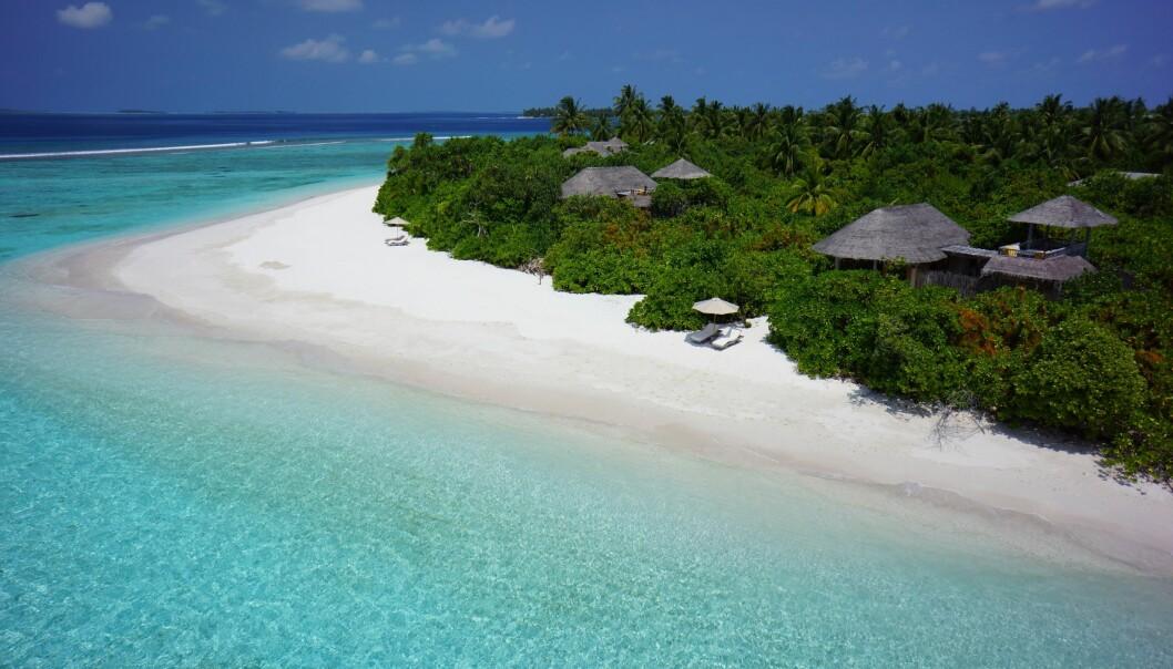 PLASTFRITT: Dette bildet er fra hotellet Six Senses Laamu, en av Paradisreisers samarbeidspartnere, i Maldivene. – Hotellet er plastfritt og det resirkuleres 1500 glassflasker i uken, som de bruker til å lage lamper og andre ting av. Ja til gjenbruk og minst mulig søppel!, sier reiseekspert Gro Anet Holme Brastad.