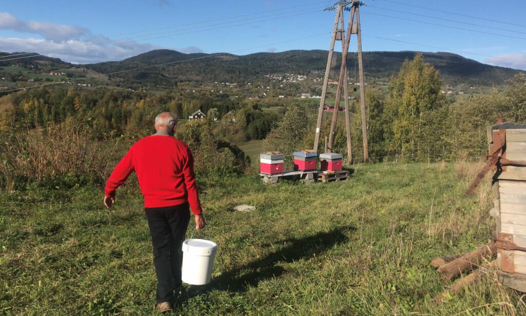 SISTE STIKK: På vei til årets søteste byttehandel. Biene får sukkerlake, vi får honning.