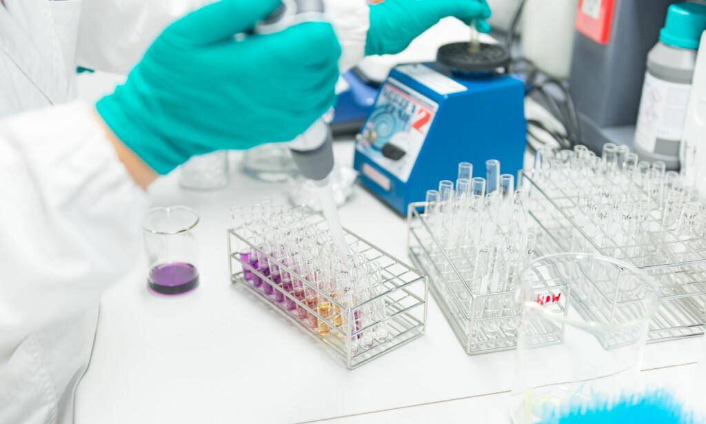 KJØPTE DATABASE: I sommar kjøpte legemiddelfirmaet GalaxoSmithKline tilgang til 23andMe sin database med DNA-informasjon om fem millionar personar. Blant dei er det truleg fleire tusen nordmenn. Foto: Shutterstock / NTB Scanpix