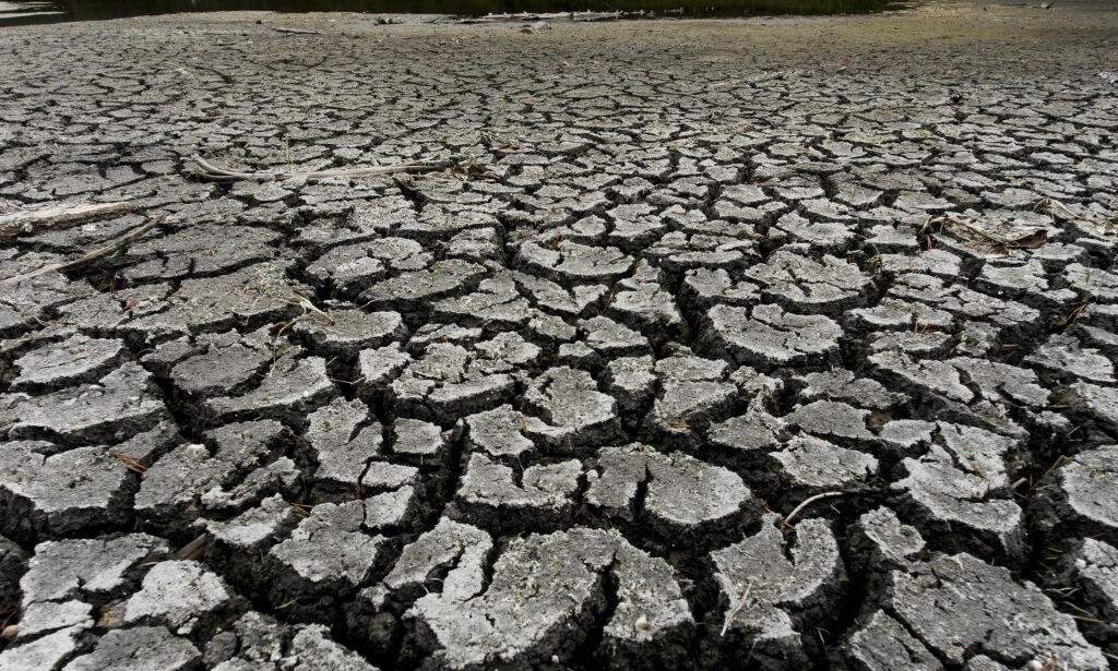 image: Oljebransjen om klimasjokket: - Massivt mye mer krevende