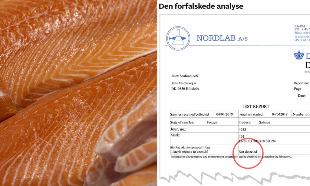 image: Juks med norsk laks i Danmark: Hør det utrolige lydopptaket