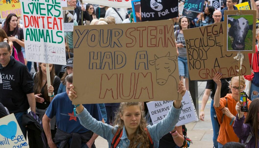 <strong>KALVER SKILLES FRA MØDRENE:</strong> Debatten om den ideologiske motsetningen mellom folk som er glad i koteletter og veganere, kan forstås som et spørsmål om mat, eller den kan forstås som et rettighetsspørsmål, skriver innsenderen. Her fra Dyrenes Rettigheters demonstrasjon i London i august. Foto: Steve Parkins / Shutterstock