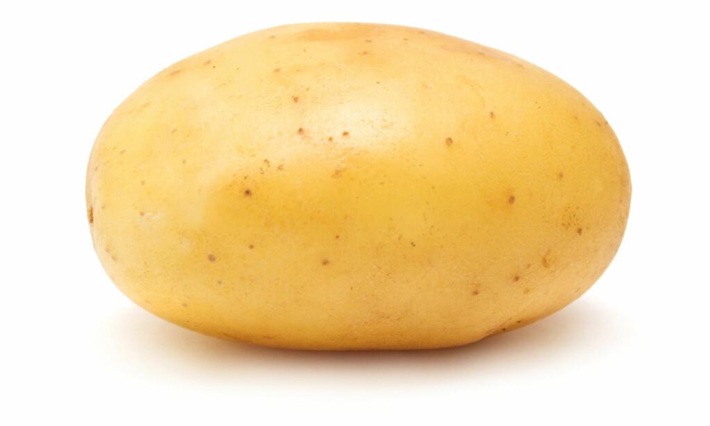 SMITTSOM? Utenlandske poteter kan føre med seg smittestoffer, som kan utgjøre en risiko for norsk matproduksjon. Foto: Shutterstock