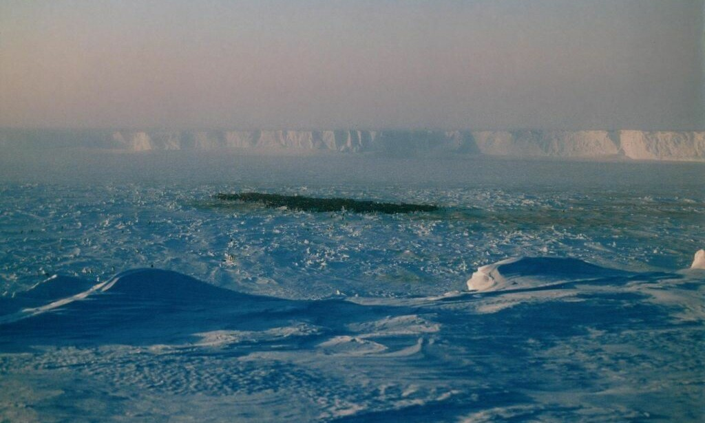 WEDDELHAVET: Tyskland og EU fremmet forslag om å skape verdens største verneområde til havs. Nå raser miljøvernere, etter at norske myndigheter var med på å klubbe ned forslaget. Foto: Wikimedia Commons