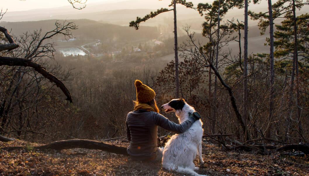 ALT ER BEDRE ENN INGENTING: – Alt du gjør i stedet for å sitte stille, er bra, om det så bare er å gå i et minutt, sier eksperten. FOTO: NTB Scanpix