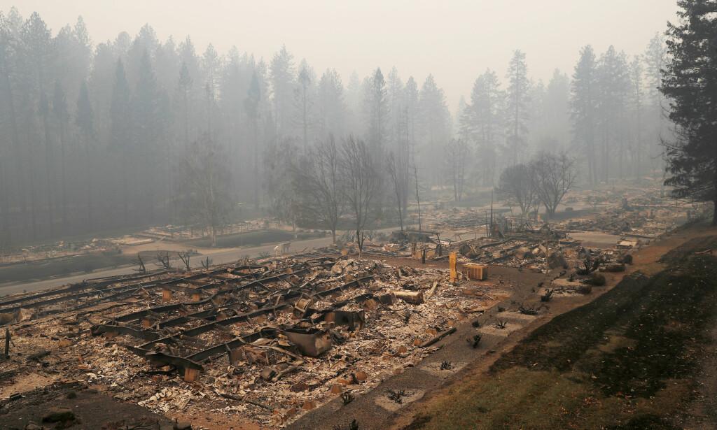 BOLIGFELT UTSLETTET: Hele boligfelt i Paradise er brent ned til grunnen. Foto: AP Photo / NTB Scanpix