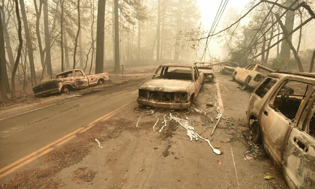KRAFTIG: Brannen som feide gjennom Paradise var så kraftig at det smeltet metall fra biler. Foto: AFP Photo / NTB Scanpix