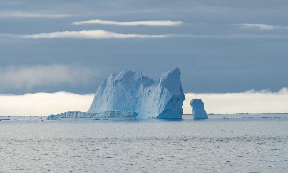 UKLART MÅL: Vårt mål er å bidra til at viktige og sårbare økosystemer i havet beskyttes, mens regjeringens og UDs mål altså er mer uklart, skriver leder av Greenpeace Norge. Foto: Christian Åslund / Greenpeace United Kingdom / AFP / NTB Scanpix