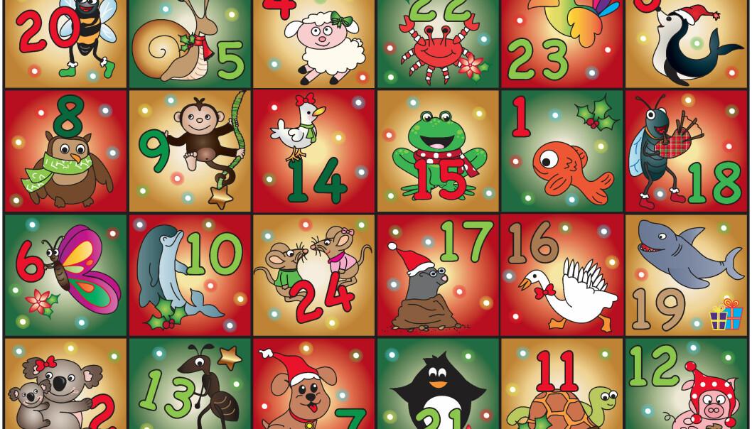 DYRISK MORO: Hva med et festlig bilde, for å korte ned ventetiden frem mot jul? FOTO: NTB Scanpix