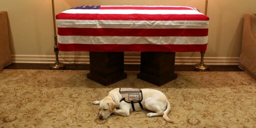 image: Presidentens hjelpehund rører USA: «Oppdrag utført»