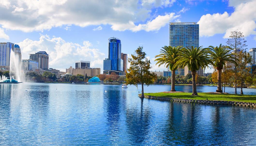 <strong>MYE Å FINNE PÅ:</strong> Florida er et ettertraktet reisemål, men tidligere bød mobilbruken på problemer for Hoshiars familie . Foto: SCANPIX / SHUTTERSTOCK
