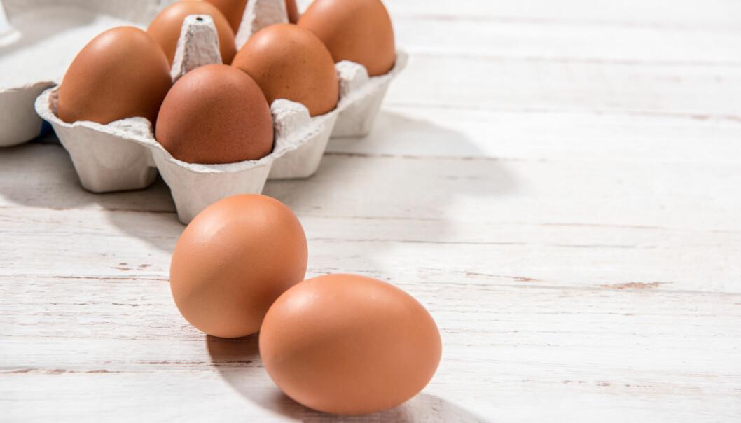 EGG: Egget inneholder de fleste næringsstoffer, og MatPrat kaller det for naturens egen vitaminkapsel. Foto: Shutterstock