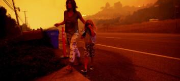 Skogbranner, flom og tørke: Slik var væråret 2018