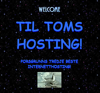 Tomshosting.no er ikke den peneste nettsida Jørgen har laga.