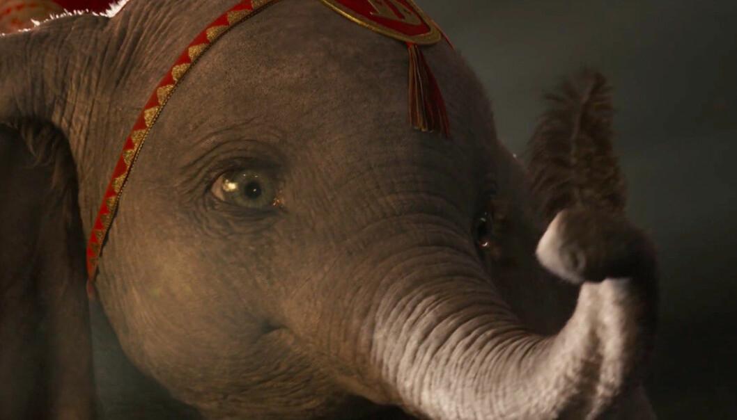 PÅ KINO I 2019: Dumbo er blant filmene som kommer på kino. Foto: Skjermdump fra YouTube
