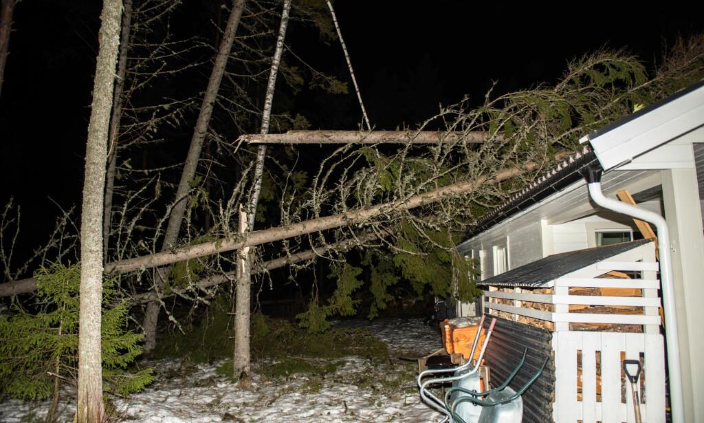 VIPPER: Et av trærne ligger og vipper på taket. Foto: Øistein Norum Monsen
