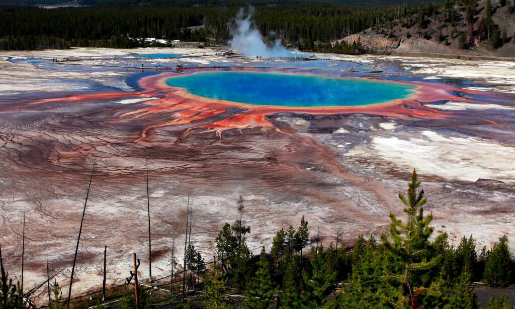 - KAN FORSVINNE: Et av stedene som står i fare for å rammes av klimaendringene, er Yellowstone nasjonalpark i USA. Foto: NTB Scanpix