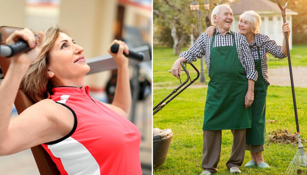 KAN LØNNE SEG: Styrketrening kan gjøre deg mer selvstendig som gammel, mener personlig trener. Foto: Shutterstock