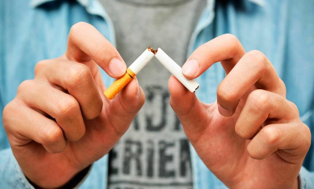 BÅDE RASKE OG LANGVARIGE EFFEKTER: Nikotin brytes ned ganske raskt i kroppen. Foto: Scanpix