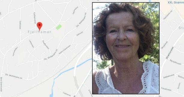 image: Mener Google Maps kan hjelpe i forsvinningssaken