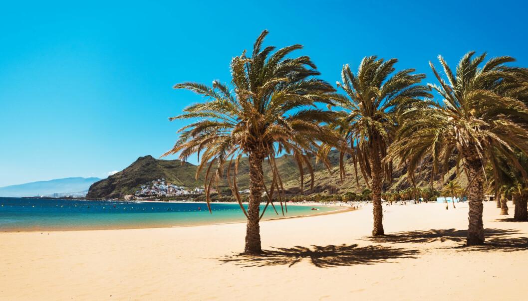 TENERIFE: Det er flere grunner til at Tenerifes sørkyst seiler opp som den nye kanarifavoritten. FOTO: NTB Scanpix/ Torild Moi/ Siam Park/ Ronny Frimann