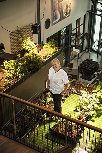 <strong>OPTIMISTISK:</strong> Tidligere slottskokk Heidi Bjerkan har mange gryter på komfyren. Hun eier og driver Credo i Trondheim, som er en stor Michelin-favoritt, og er også en av initiativtakerne til gatemathallen Vippa i Oslo. Foto: Geir Mogen