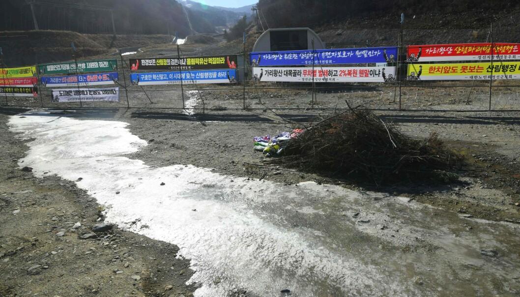 <strong>ALPINT:</strong> Slik ser det ut ved Jeongseon Alpine Centre. Her ble det kjørt utfor for ett år siden. Nå er bakken forlatt, men plakatene henger fortsatt oppe. Foto: Jung Yeon-je / AFP