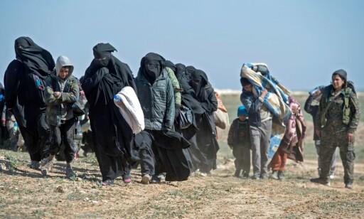 EVAKUERT: Tusenvis av sivile har blitt evakuert fra Baghouz de siste ukene. Foto: Fadel SENNA / AFP / NTB Scanpix