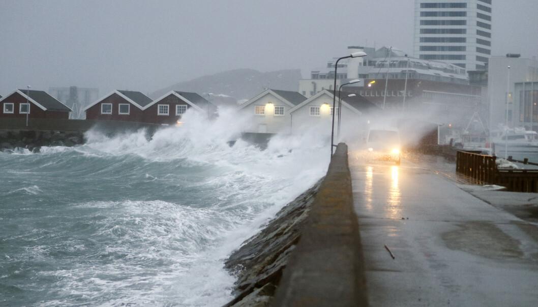 Uvær ved moloen i Bodø sentrum lørdag formiddag. Foto: Torstein Rasmussen / NTB scanpix
