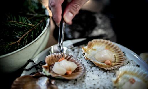 SKJELEBERT BESØK: Maten er minst like flott som man forventer på Kontrast. Kamskjellene var det eneste som ikke traff blink, ifølge anmelderne.