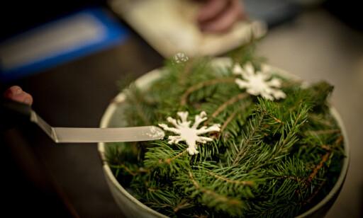 LOKALT: Kontrast lager mat på lokale råvarer, for eksempel løvtynn snøkrystall-chips med frysetørket rømme.