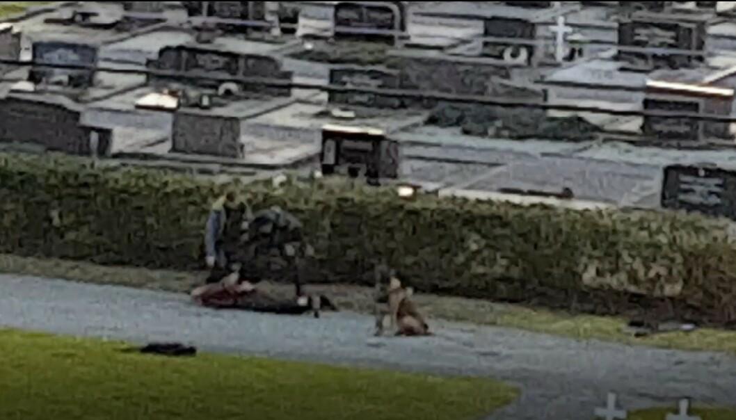 <strong>PÅGREPET:</strong> En mann (bildet) er pågrepet av politiet i Haugesund, mistenkt for å ha forsøkt å bryte seg inn i et hjem med øks. En kvinne er kritisk skadd. Foto: Tipser