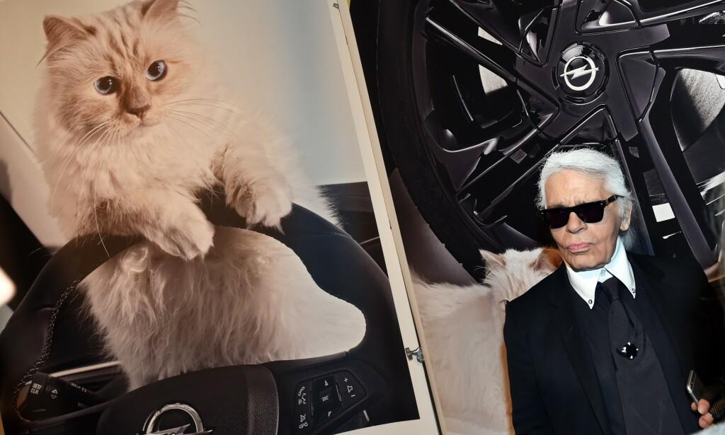 ARVING: Karl Lagerfeld poserer ved siden av et bilde av katten Choupette i Berlin i 2015. Nå lurer enkelte på hva som skal skje med den søte katten etter at «pappa» døde i går. Foto: NTB Scanpix