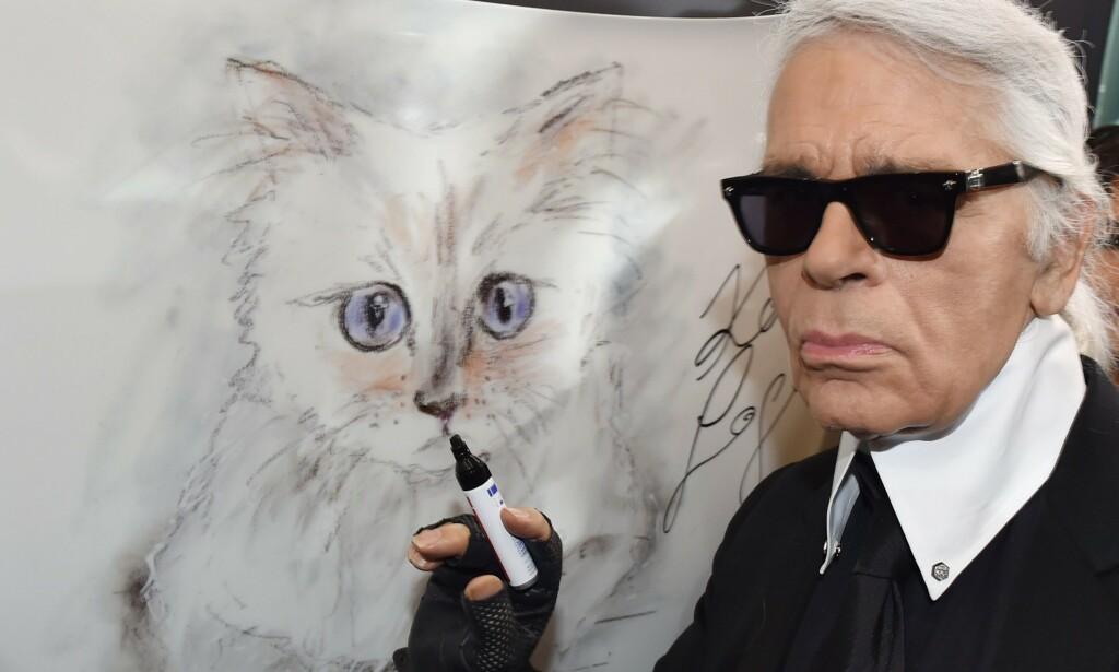 HØYT ELSKET: Katten Choupette var en konstant inspirasjonskilde for Lagerfeld. Her har han tegnet den søte pusen. Foto: NTB scanpix