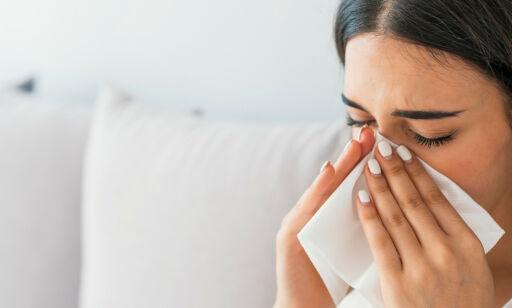 image: Blir du alltid forkjølet på senvinteren? Det kan være pollenallergi