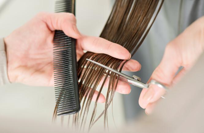 KLIPPE TUPPENE: Ifølge eksperten stemmer det at håret vokser raskere hvis man klipper det jevnlig. Det er fordi du unngår at slitasjen klatrer oppover. FOTO: NTB Scanpix