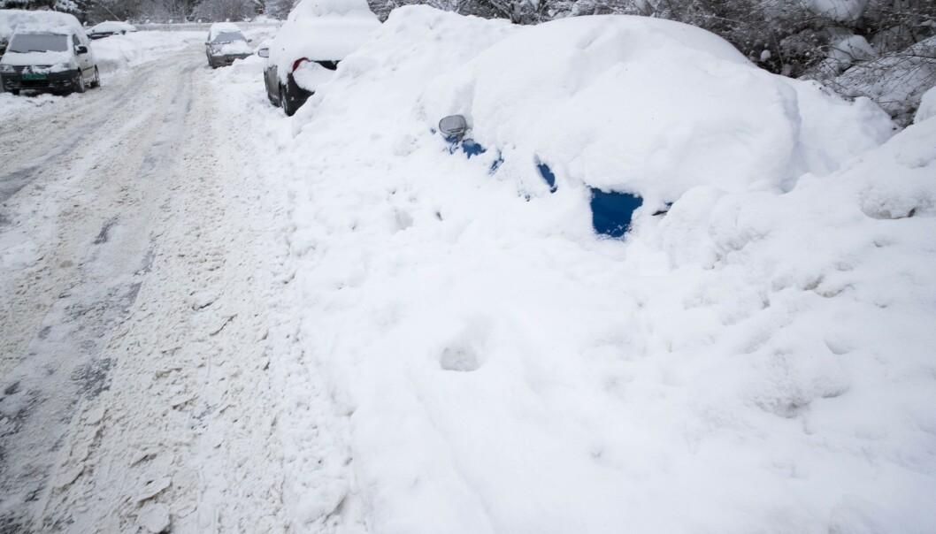 <strong>SNØKAOS:</strong> Det er ventet å komme opp mot 50 centimeter med snø i løpet av tirsdagen i deler av Sør-Norge. Det vil føre til vanskelige kjøreforhold. Her fra Østlandet tidligere i vinter. Foto: Terje Pedersen / NTB scanpix
